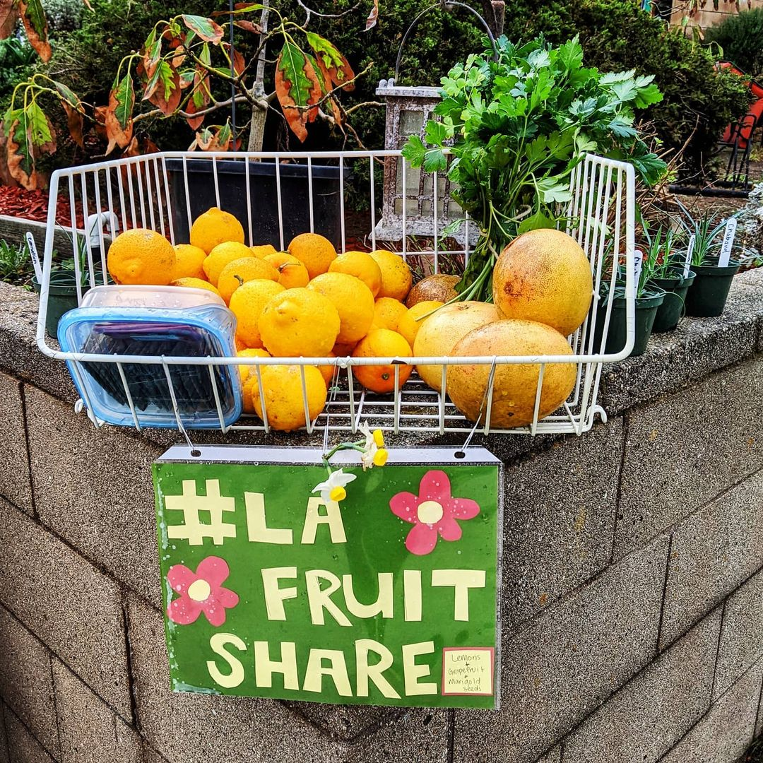 Join the LA Fruit Share